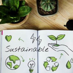 Understanding Sustainability. It starts with Eco Design