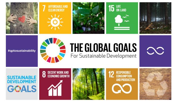 Translating Sustainable Development Goals into actions