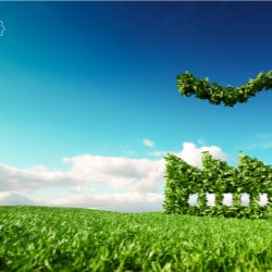 Accelerating business transformation for sustainability